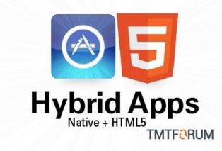 没赶上Native app的,快抓紧Web app创业机会
